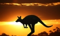 """New strategy for a New China"": Australian tourism changes tack"