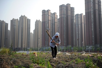 China's urbanization cruises in fast lane